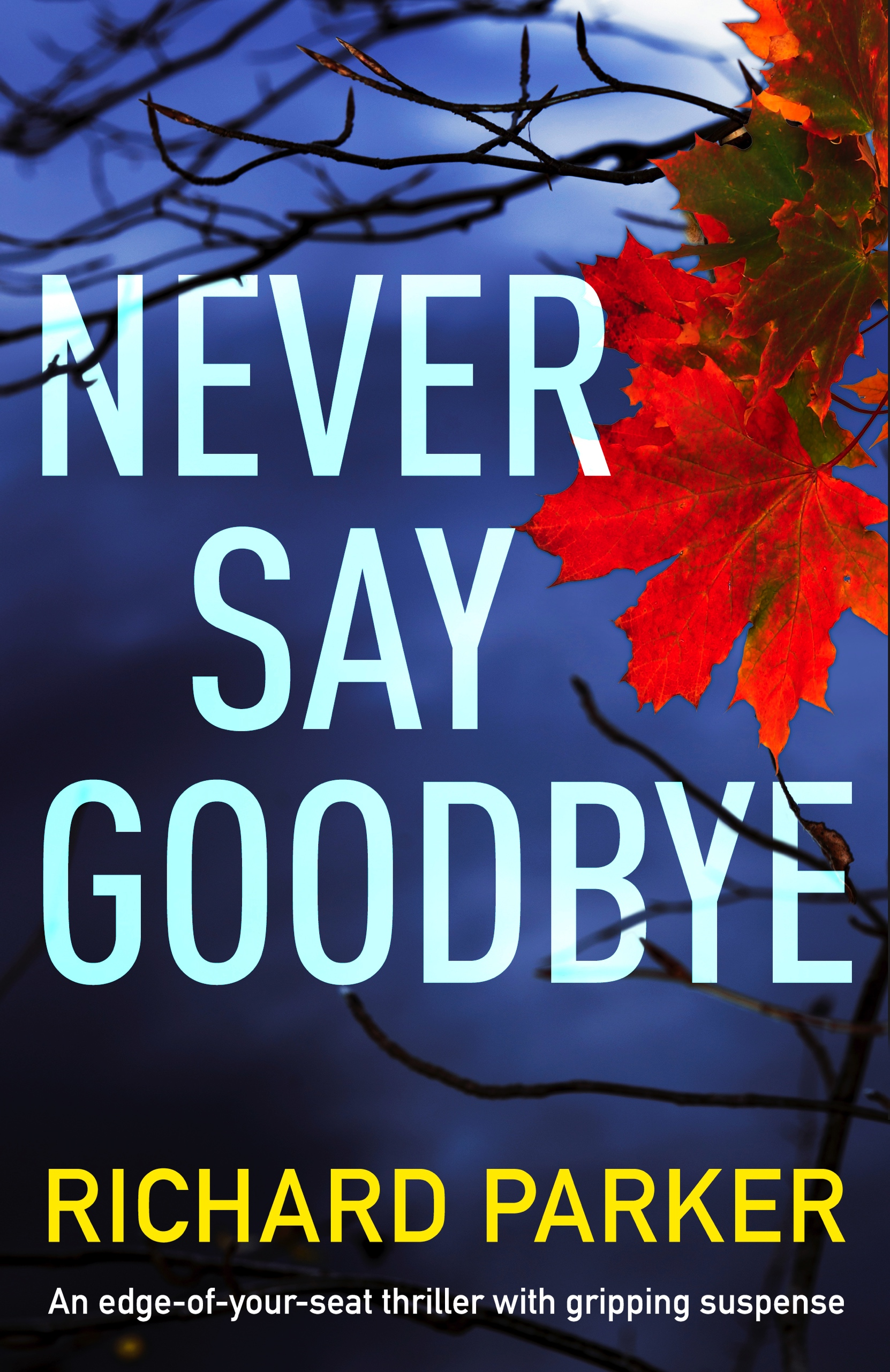 Never-Say-Goodbye-Kindle