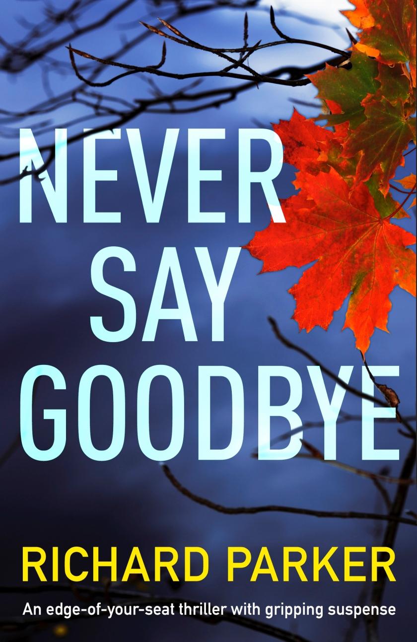 Never-Say-Goodbye-Kindle